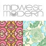 Amy Butler Midwest Modern Collection