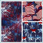 Timeless Treasures Patriotic