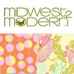 Amy Butler Midwest Modern II