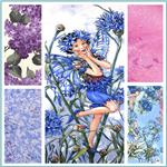 Michael Miller Cornflower Fairy