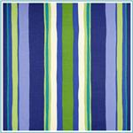 Indoor/Outdoor Striped Fabric