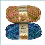 Caron Simply Soft Paints Yarn