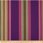Flower Show 3 Awning Stripe Plum