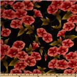 0265892 Flora Rosa Morning Glories Black