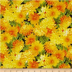Fresh Market Chrysanthimum Yellow