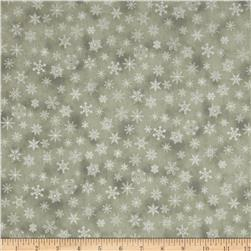 Holiday Accents Classics 2013 Metallic Small Snowflake Grey