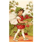 Michael Miller Strawberry Fairy Panel Multi