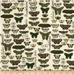 210308 Short &amp; Stout Butterflies Cream