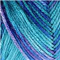 Caron Simply Soft Yarn Paints (0006) Oceana