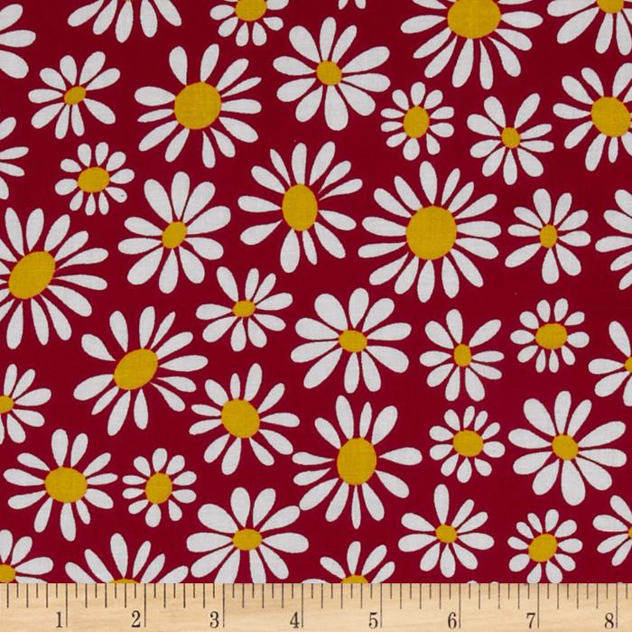 Crazy Daisy Small Daisy Bloom Red/Yellow