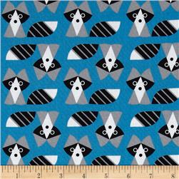 Picture Pie Raccoon Blue/Grey