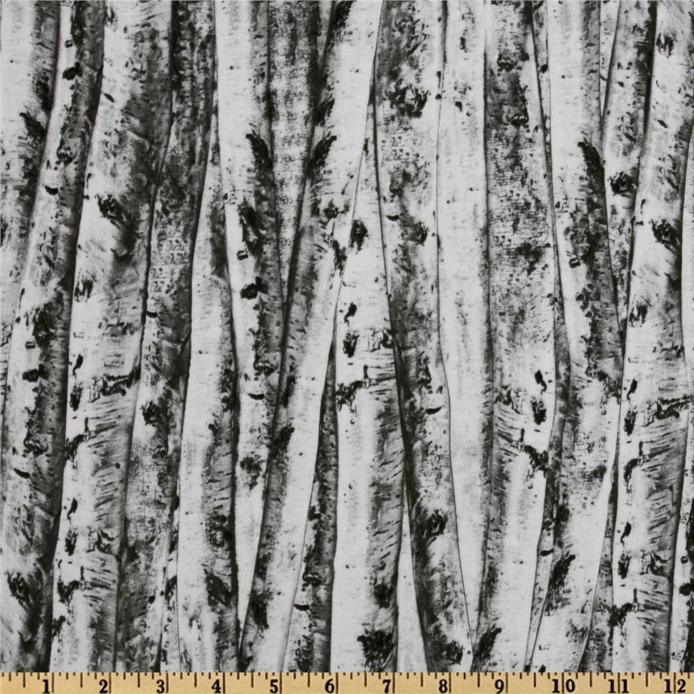 Timeless Treasures Birch Allover Grey