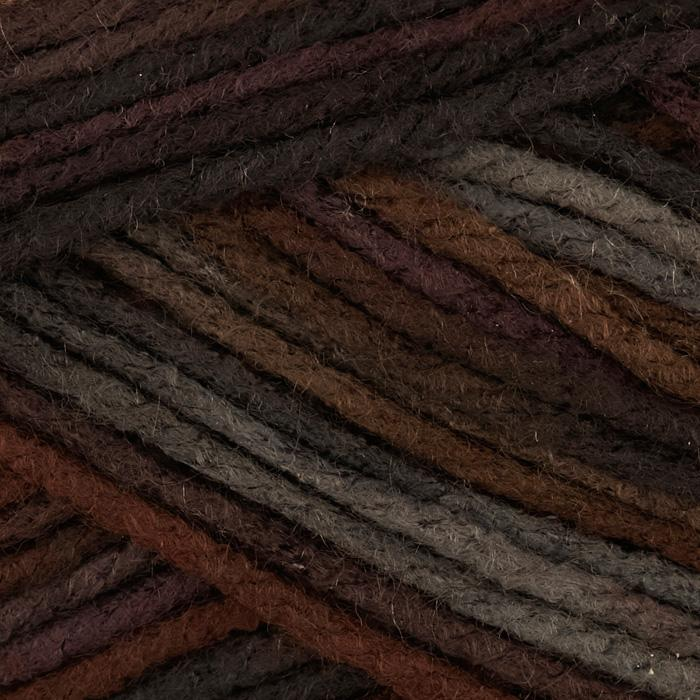 Caron Simply Soft Yarn Paints (0009) Sticks & Stones