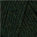 Lion Brand Wool-Ease Chunky Yarn (180) Evergreen