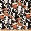 New Farm Animals Cows Black