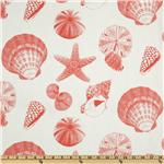UO-777 Premier Prints Shells White/Coral