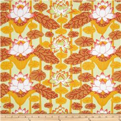 Kaffe Fassett Lotus Stripe Gold