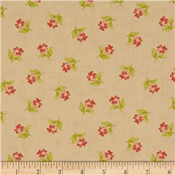 Honeysweet Poppy Blooms Biscuit