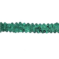 Team Spirit #30 Sequin Trim Aqua