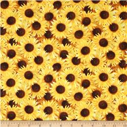 Sunflowers Small Packed Sunflower Gold