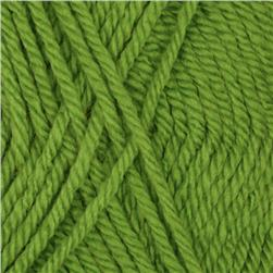 Patons Canadiana Yarn (10712) Lime Juice