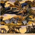 Bringing Nature Home African Animals Scenic Wild