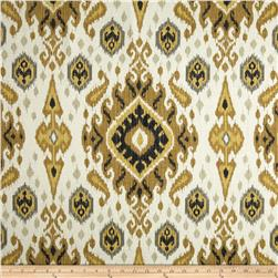 Swavelle/Mill Creek Ikat Kennebecc Sandstorm