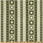 True Colors Star Stripe Green