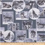 0269319 Kanvas On The Wild Side Wolf Grey