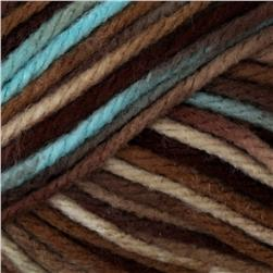 Caron Simply Soft Yarn Paints (0005) Driftwood