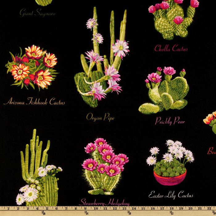 Michael Miller Southwest Cacti Black