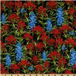 FV-262 State Flowers Indian Paint Brush Black/Red