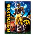 Collegiate Fleece Panel University Of Iowa