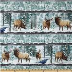 Whispering Winter Scenic Stripe Multi