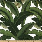 Tommy Bahama Indoor/Outdoor Swaying Palms Aloe