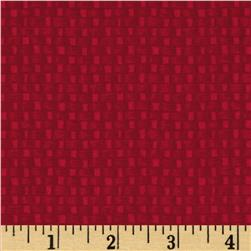 Little Rivers Basket Weave Texture Red