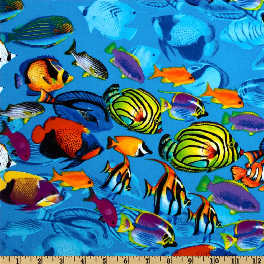 School Of Tropical Fish Tahiti Wallpapers