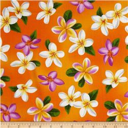 Tropical Breeze Plumera Orange