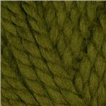 Lion Brand Wool-Ease Thick & Quick Yarn (178) Cilantro