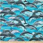 Dolphins Blue
