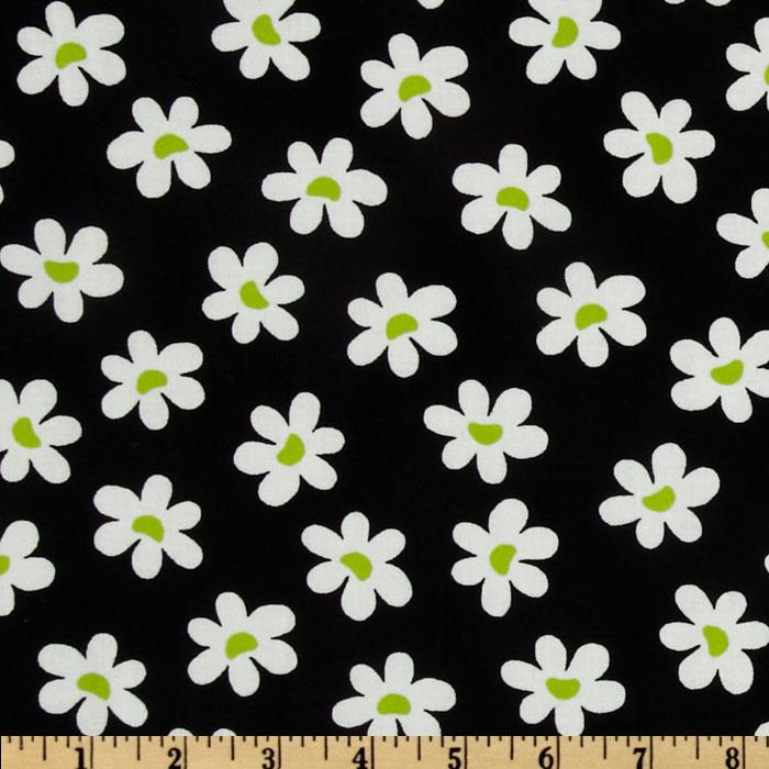 Sun-Kissed Daisies Black
