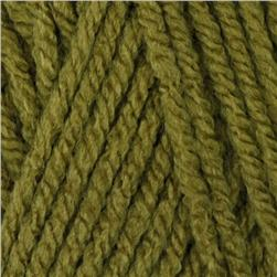 Waverly Yarn for Bernat Beautiful Things (55250) Irish Moss