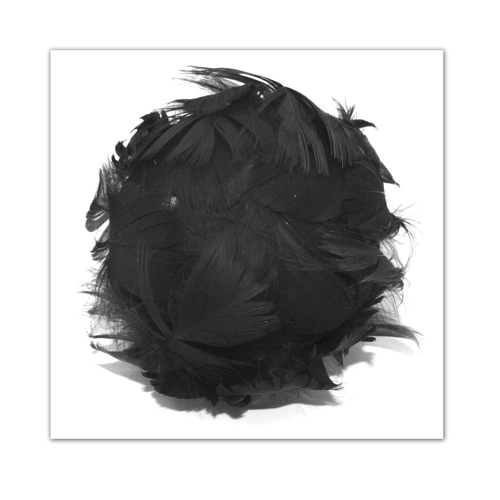 Laliberi Pin & Clip Flower Medium Curled Feather Bud Black