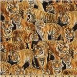 222365 Living Wonders Tigers Black/Orange