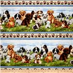 232613 Greg Giordano Novelties Puppy Border Stripe Natural