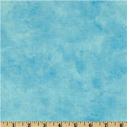 Timeless Treasures Flip Floppin Summer Fun Texture Sky Blue