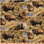 Bison Range Allover Bison Brown