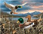 Realtree Camouflage Ducks Panel Multi