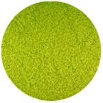Jacquard Acid Dye Kelly Green