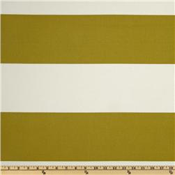 For Your Home Stripes Ivory/Olive